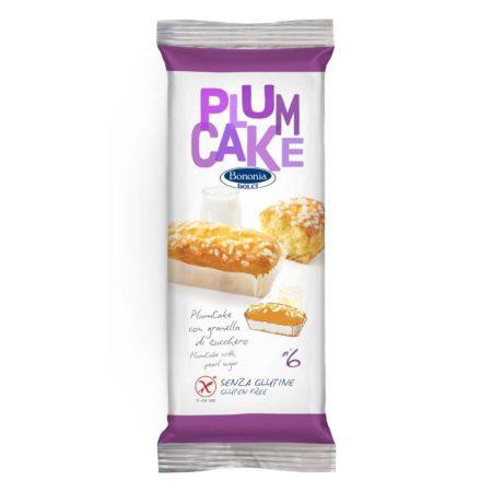 Plum Cake con Granella Biscotti e Merende